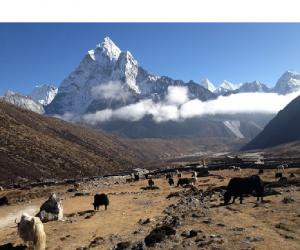 Himalaya-Darshan.png